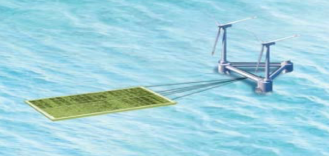 iseamc phytolutions Mariculture windfarm